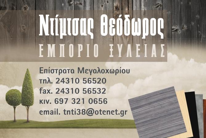 ΝΤΙΜΤΣΑΣ ΘΕΟΔΩΡΟΣ